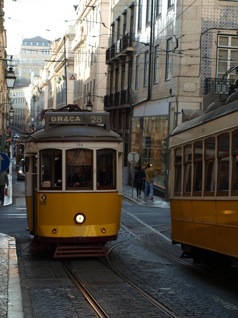 cheira a Lisboa
