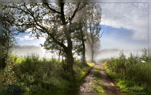 Chemin Ardennais.