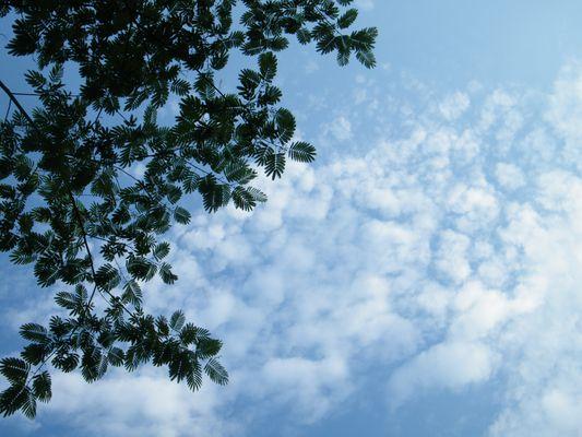 chemin dans les nuages