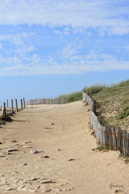 chemin de bord de mer