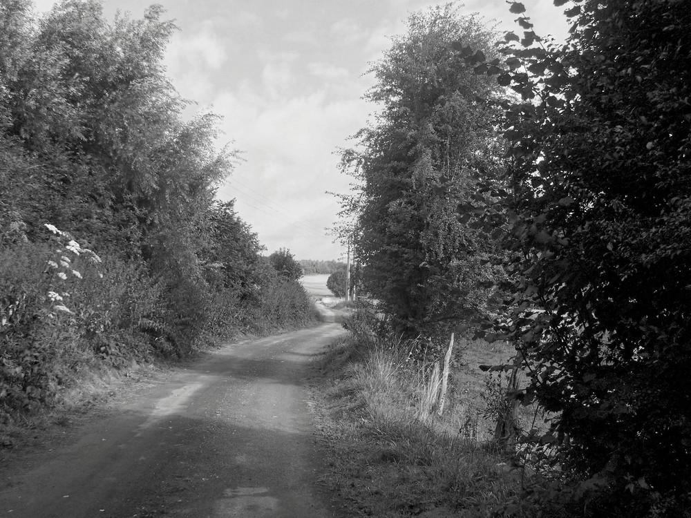 chemin de campagne