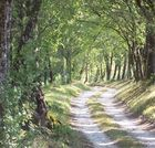 Chemin de Dordogne