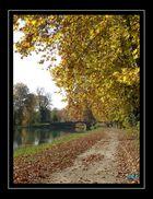 Chemin de halage à Fontet (Gironde-France)