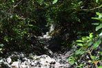 chemin de la grotte roland
