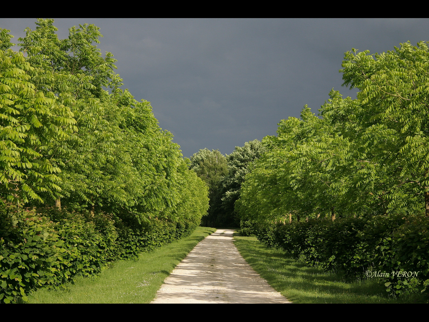 chemin de l'orage
