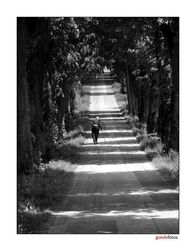 Chemin de vie