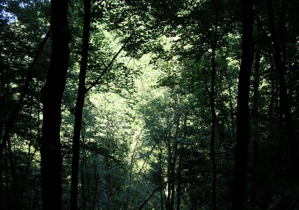 Chemin du Moulin en Auvergne