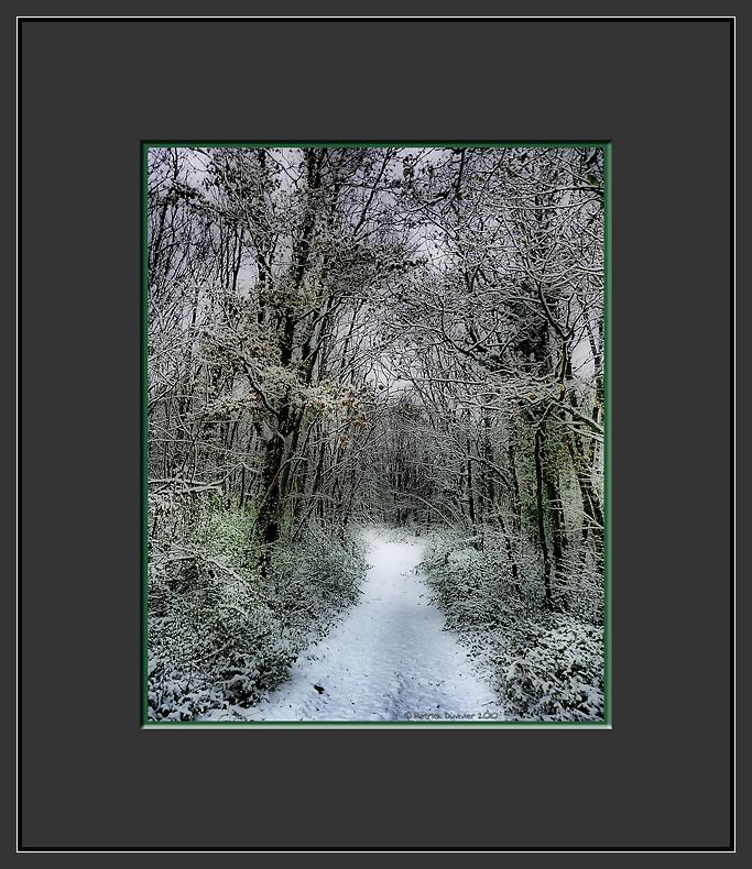 Chemin neigeux de Pouligny Saint Pierre