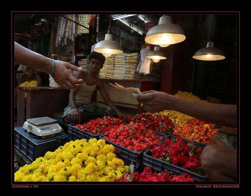Chennai Flower Market I, Chennai, Tamil Nadu / IN