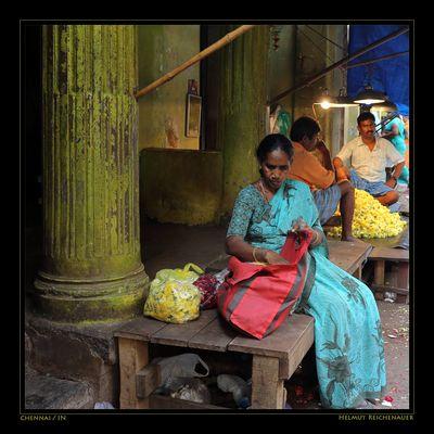 Chennai Flower Market III, Chennai, Tamil Nadu / IN
