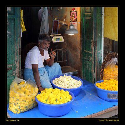 Chennai Flower Market VII, Chennai, Tamil Nadu / IN