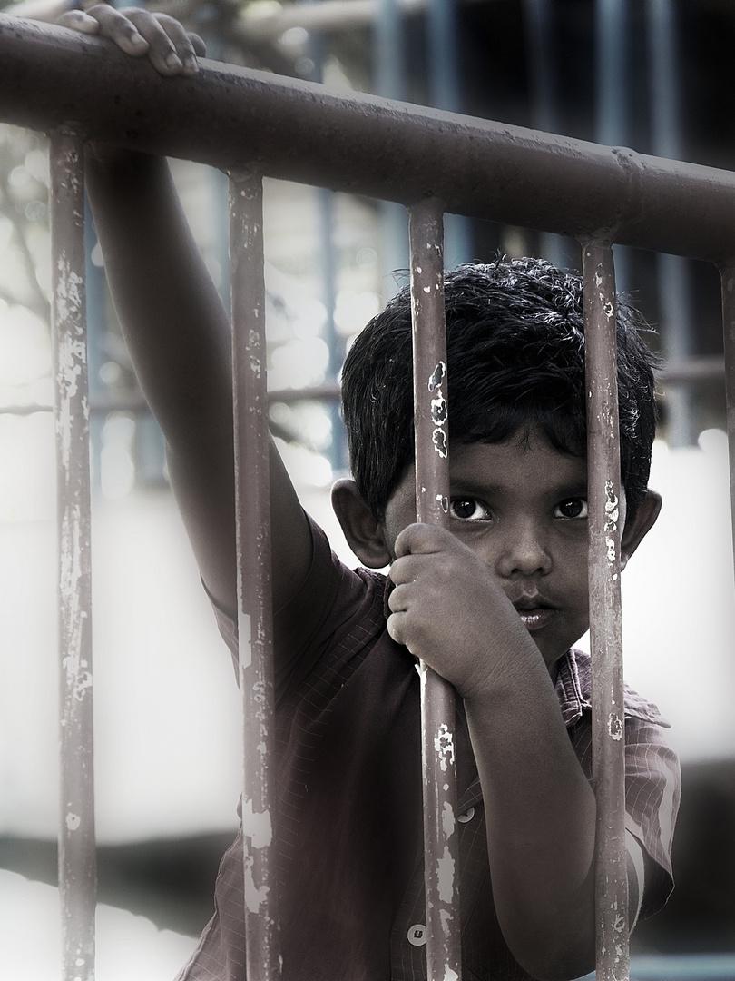 Chennai Kid
