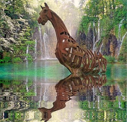Cheval amphibie.