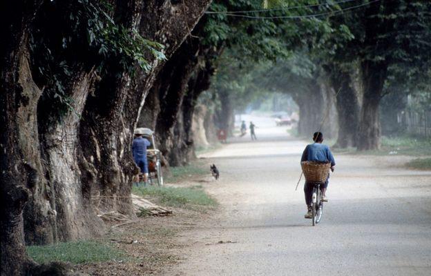[ … Chiang Rai - Cyclist ]