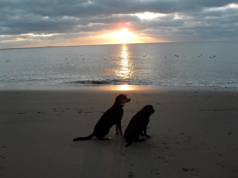 Chiara und Fenja am Strand