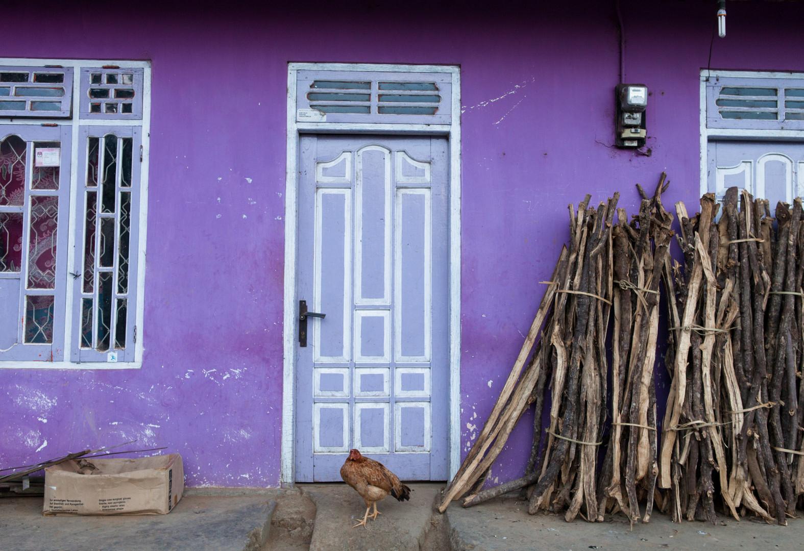 Chickens Purple Door