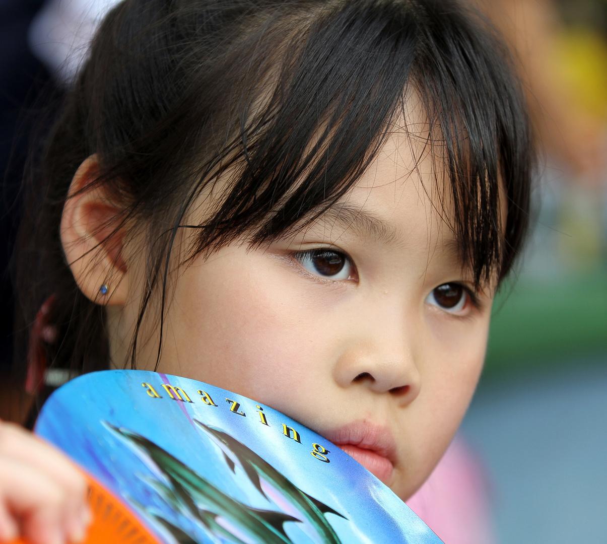 Child watching Dolfin show