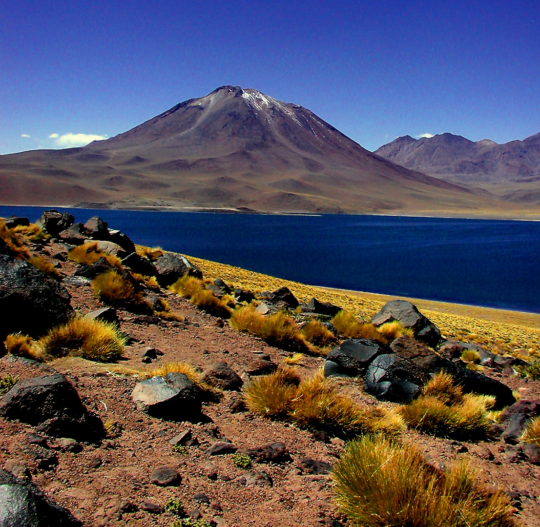 Chile Altiplano