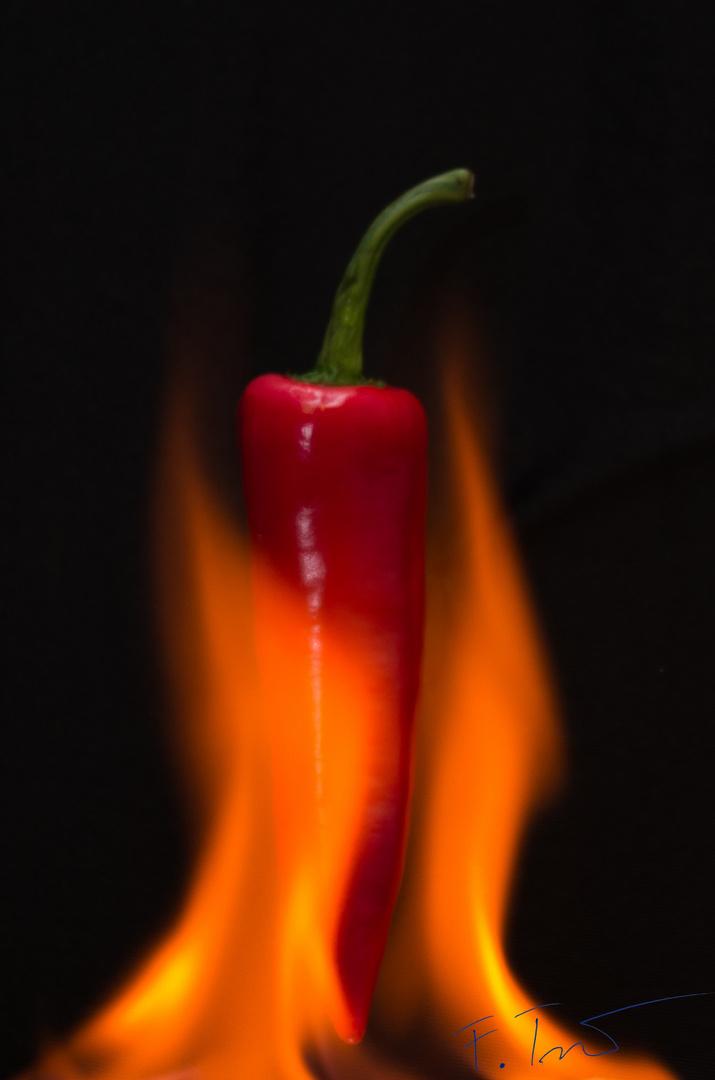 Chili - in Flammen