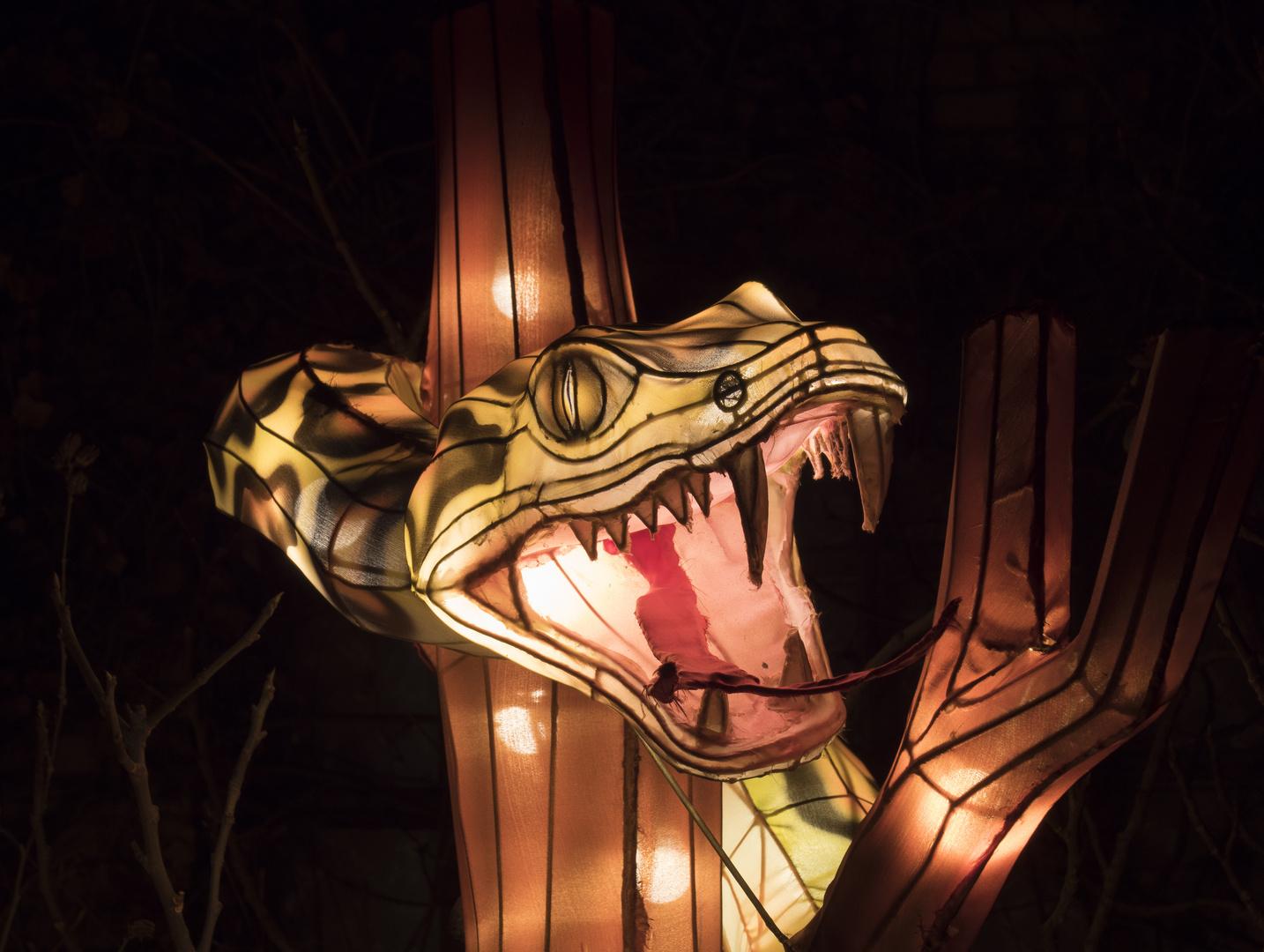 ~ China Light Festival - Schlange ~