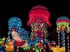 ~ China Light Festival - Shark in Action ~