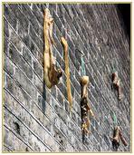 China XXVII: Luftgetrocknetes; In der ärmlichen Region Guilin