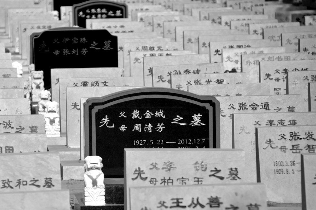 Chinese Cemetery #2