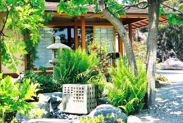 Chinese Garden im Balboa Park San Diego 02