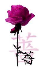 Chinesisch: ROSE