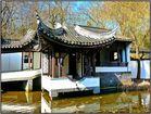 Chinesischer Garten (2)