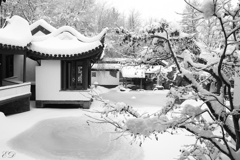 Chinesischer Garten Bochum 4