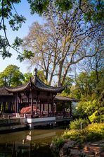 Chinesischer Garten in Frankfurt