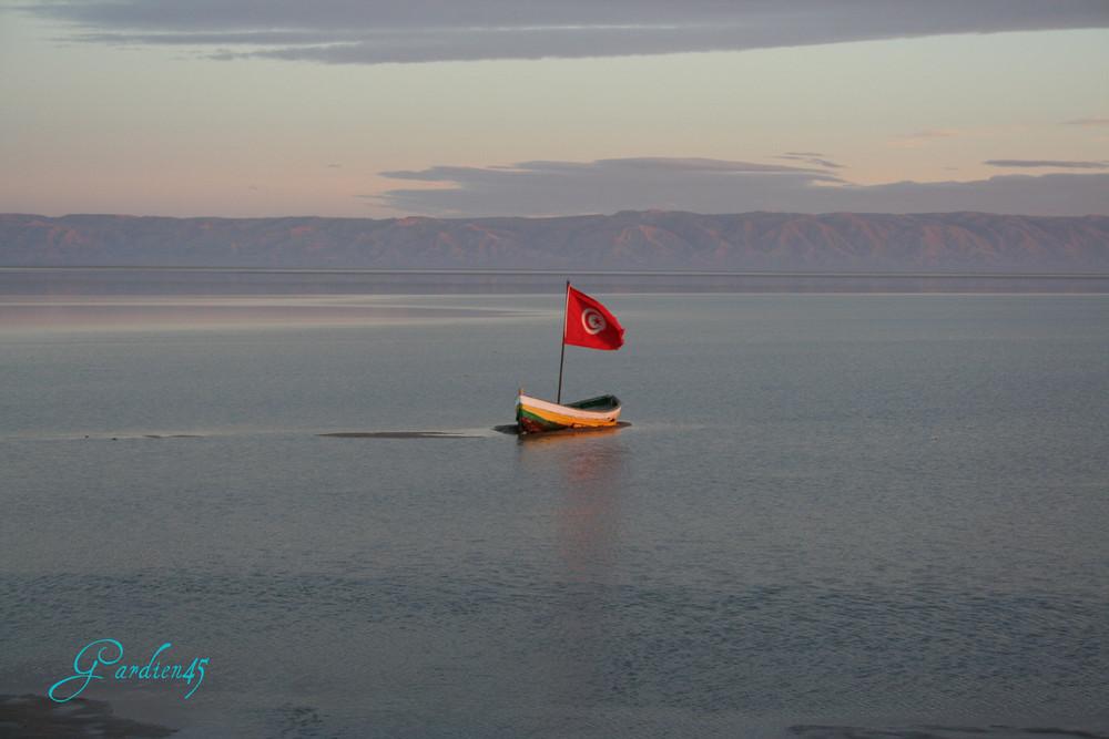 Chott el djerrid - (Mer de sel TUNISIE )