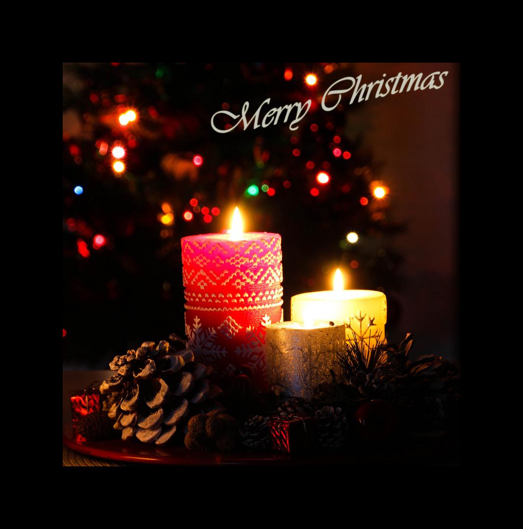 Christmas Card v1 2013