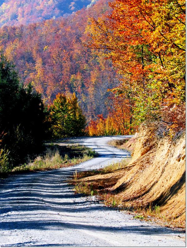 Chromatic automne