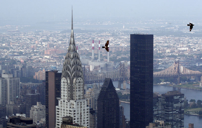 Chrysler Building with Birds