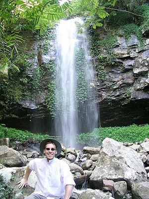 Chrystal Shower Falls im Dorrigo NP