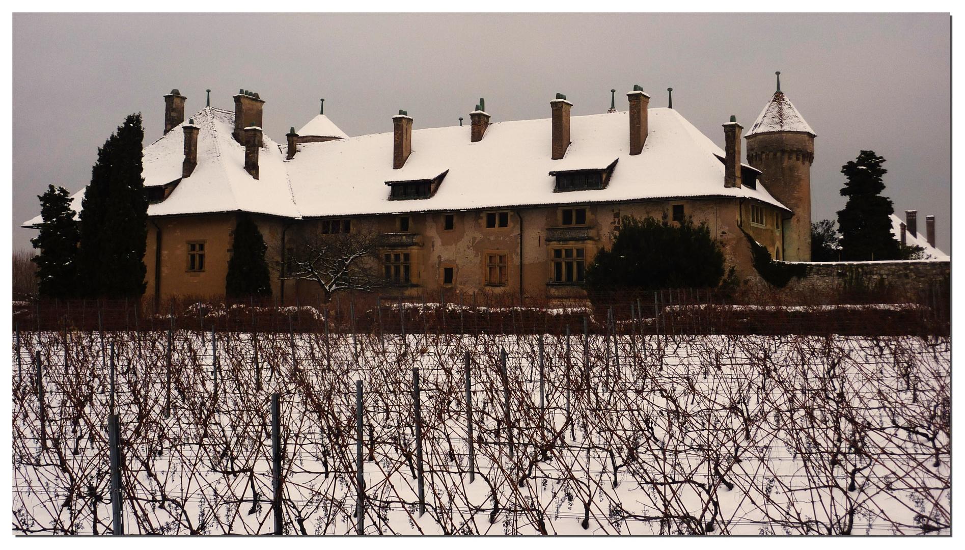 Château de Ripaille sous la neige (THONON les bains)