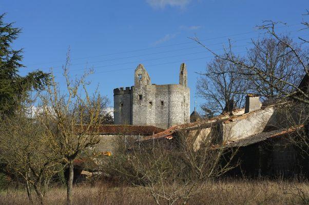 Château de st Cassien (86)