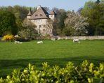 ¨Château de Thuiset (près de Thonon-les-bains 74)