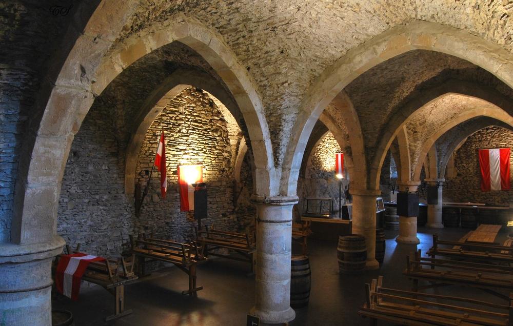 Château de Vianden IV