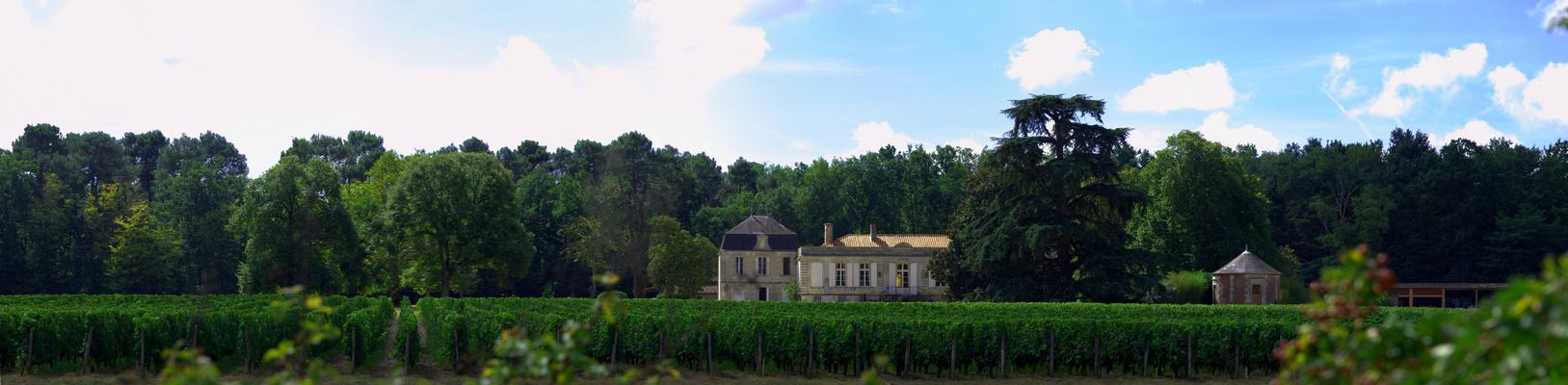 Château Picque Caillou dans la verdure