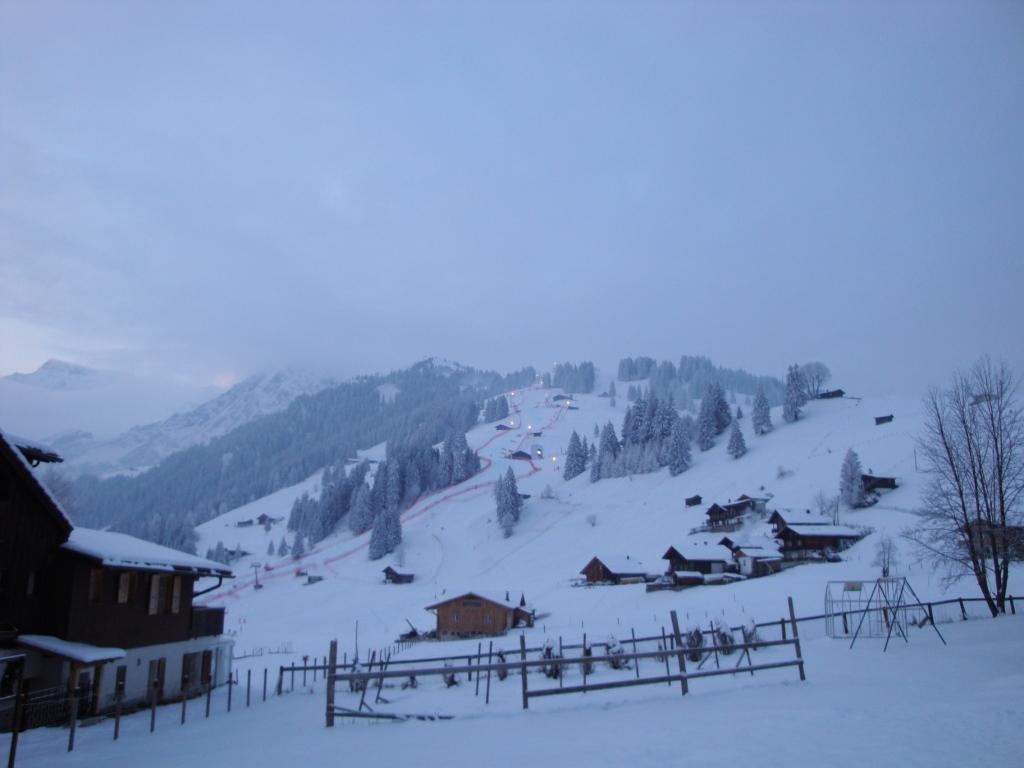 Chuenisbärgli (Ski Weltcup) Adelboden 10.01.2010