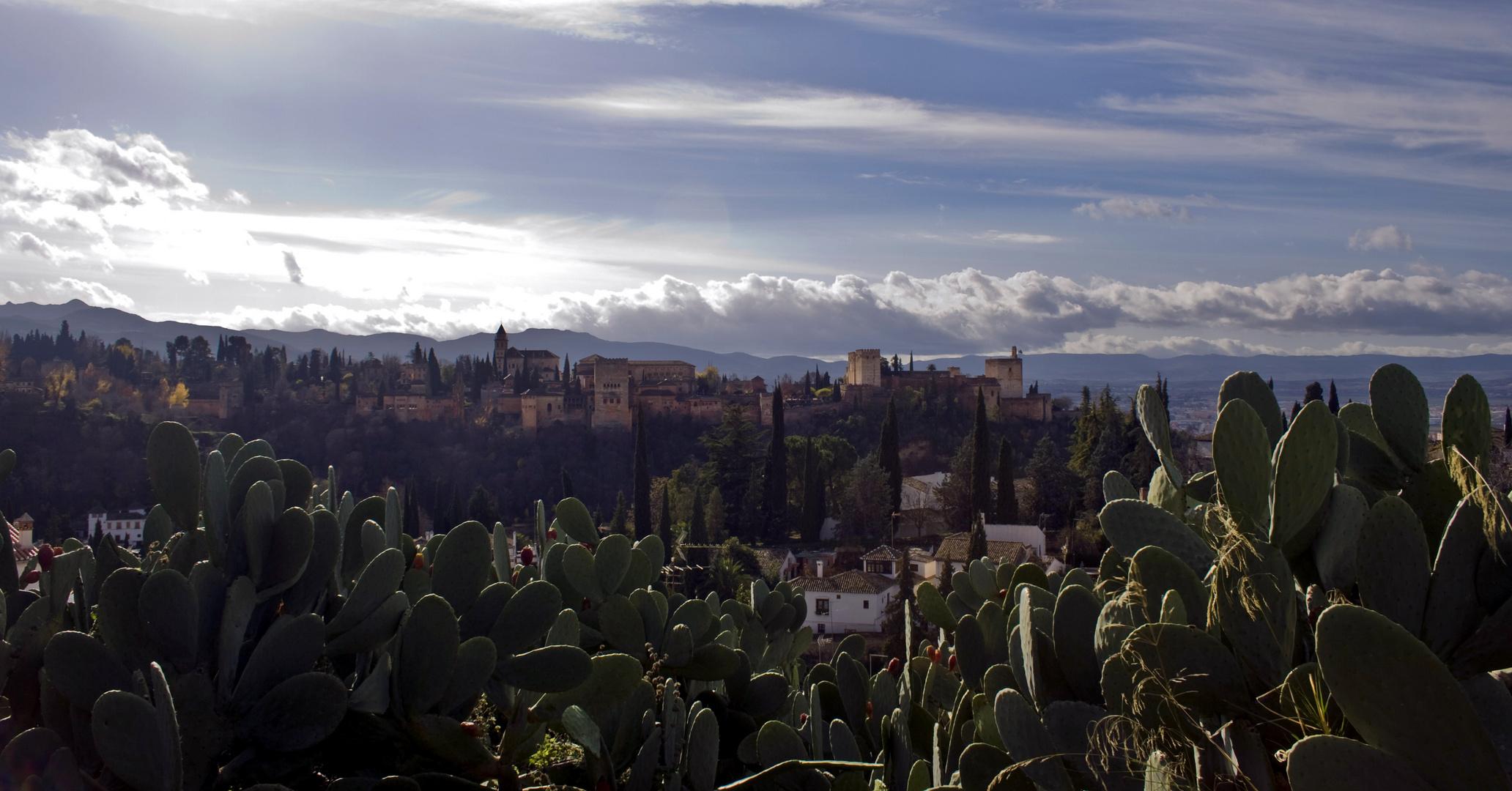 Chumberas vs. Alhambra
