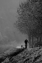 Ciclista i gos