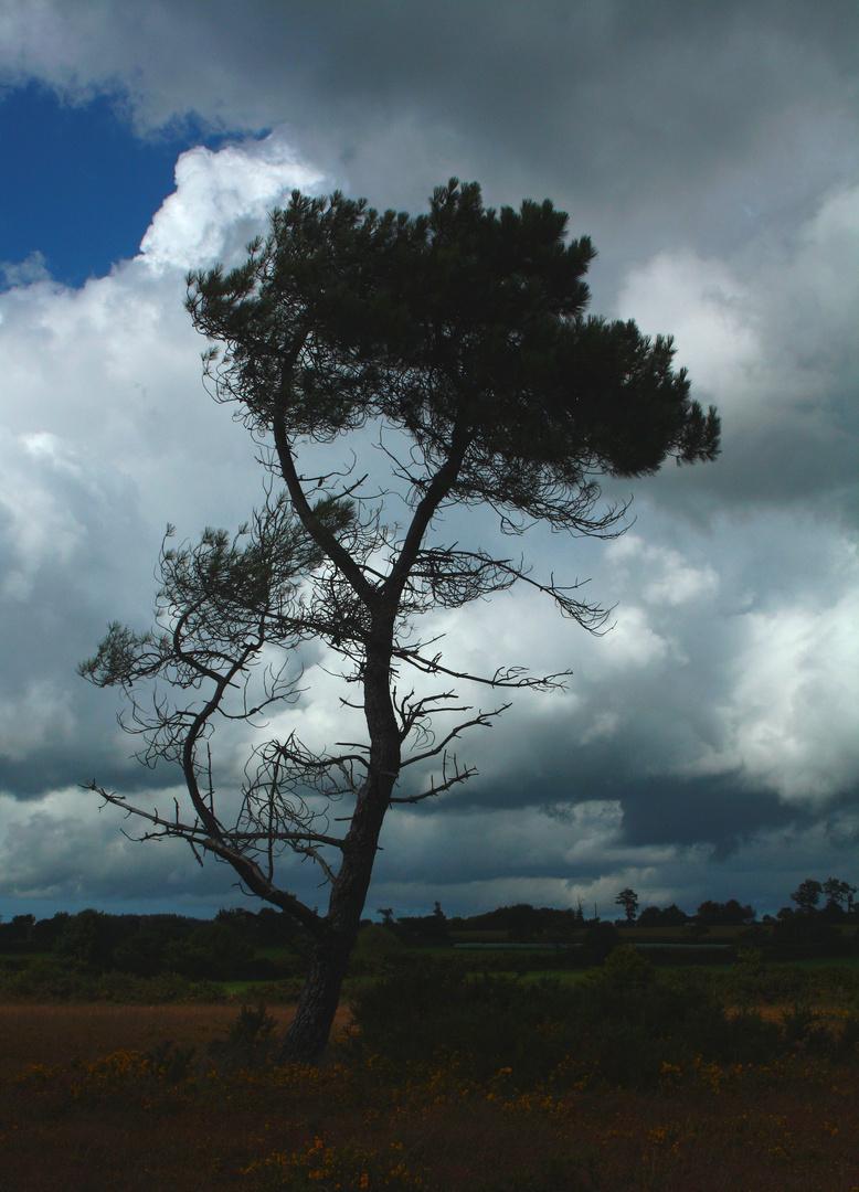 ciel menacant