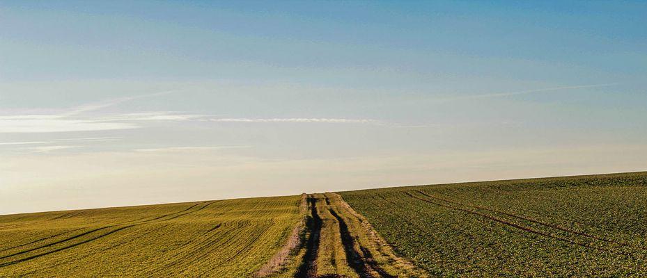ciel sur champs