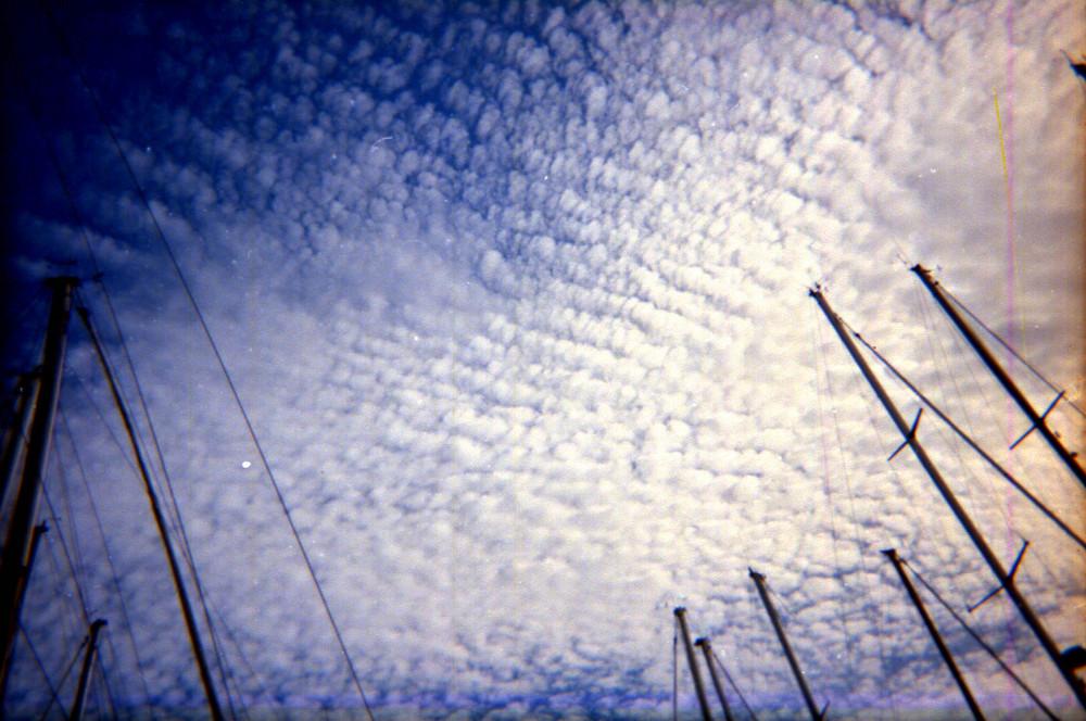 cielo blu a pecorelle