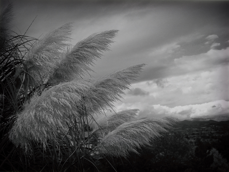 ..cielo tormentato dal vento....