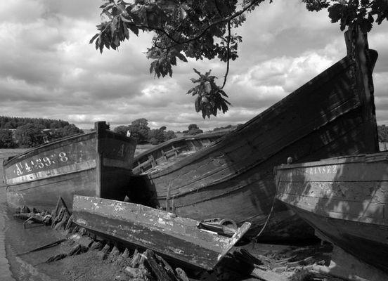 Cimetière aux bateaux... Le Bono